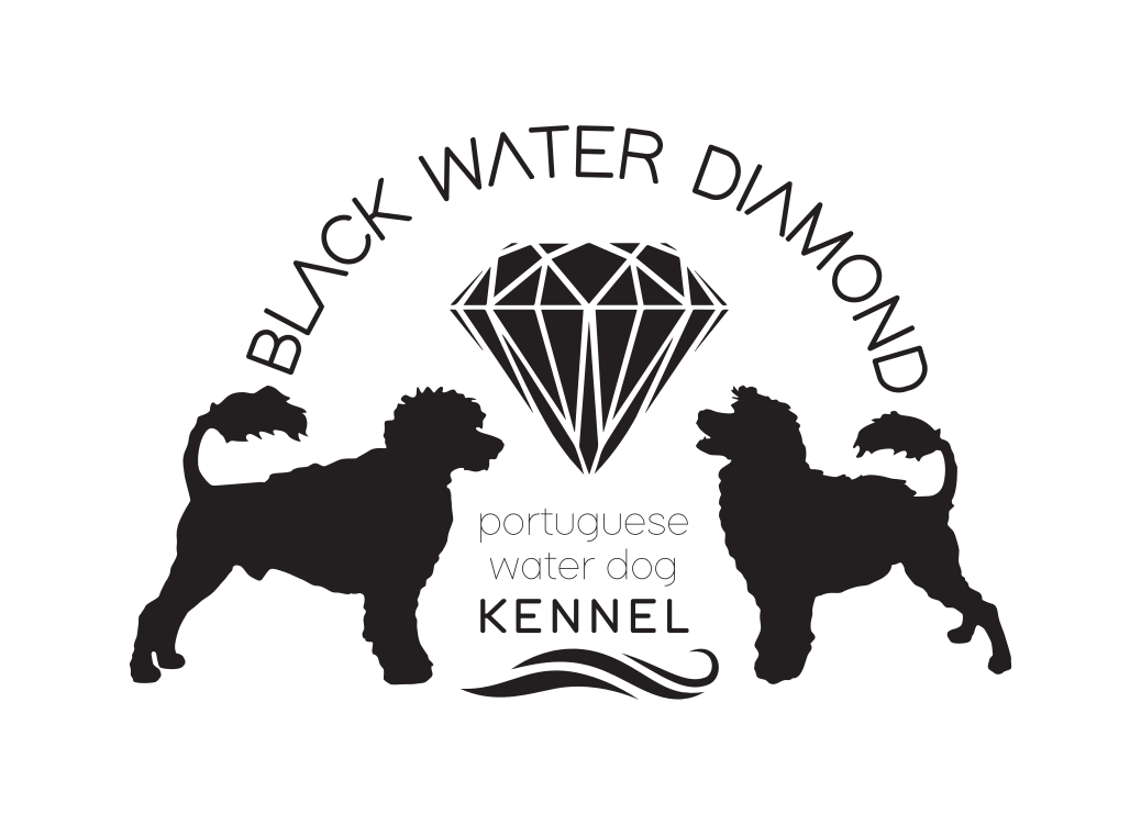 blackwaterdiamond.com
